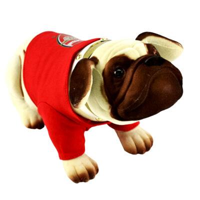 Arsenal bólogató kutya